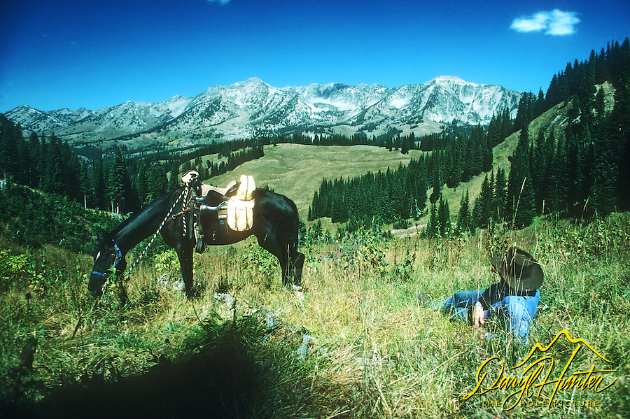 Cowboy and his horse taking in the view of the Gros Ventre Mountains, of the Bridger Teton National Forest outside of Jackson Hole Wyoming