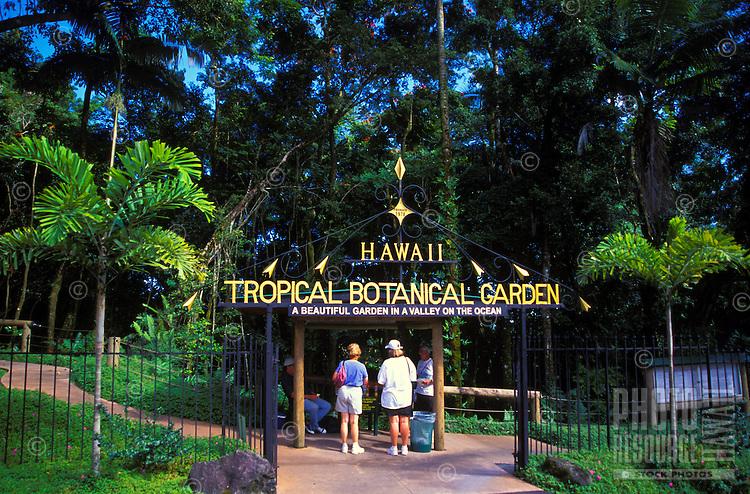Hawaii Tropical Botanical Gardens, just north of Hilo, Big Island