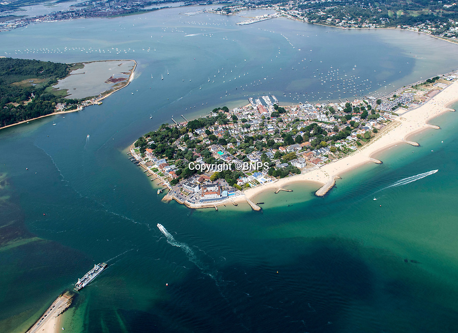 BNPS.co.uk (01202 558833)Pic:  RogerArbon/BNPS<br /> <br /> Millionaires beach resort of Sandbanks, Dorset.<br /> <br /> A millionaire who butchered protected trees that blocked out the sunlight to his two balconies and patio has been ordered to pay almost £60,000.<br /> <br /> Trevor Beale breached a Tree Preservation Order (TPO) by destroying the canopies of the 60ft tall Scots Pines at the back of his luxury home in Sandbanks, Poole, Dorset.<br /> <br /> In doing so he improved the natural light on his property's rear patio and two balconies as well as increased the value of his £1.2m property by 3.5 per cent.<br /> <br /> Beale, 58, should have sought permission from the local authority before carrying out work on the mature trees, one of which was in a neighbouring garden.<br /> <br /> He pleaded guilty to two charges of contravening tree preservation regulations at a previous hearing.