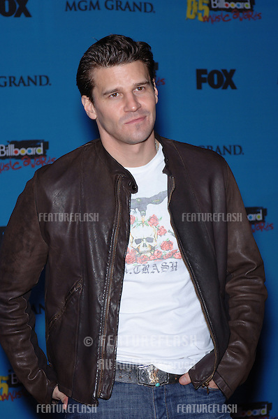 DAVID BOREANAZ at the 2005 Billboard Music Awards at the MGM Grand, Las Vegas..December 6, 2005, Las Vegas, NV .© Paul Smith / Featureflash