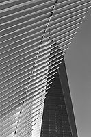 The ribbed wings of the Oculus World Trade Center Transportation Hub contrast with One World Trade Center (Freedom Tower) in New York City.