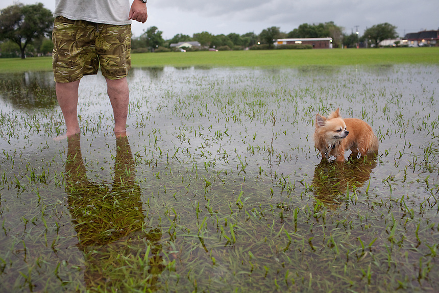 Kenneth Minor and his dog Nicky go for a walk in Nessler Park in Texas City, Texas after heavy rains. Texas City is home to a massive BP refinery.