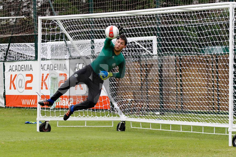 O goleiro Alemão durante treino do Palmeiras no CT da Barra Funda,na zona oeste de Sao Paulo, na manha desta terça-feira 10.FOTO ALE VIANNA - NEWS FREE.