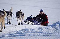 J.Royer Runs up Bank From Yukon to Grayling
