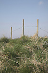Fence posts with barbed wire against blue sky, Suffolk scenery, East Anglia, England