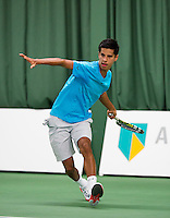 2014-01-18 Wildcard Tournament ABNAMROWTT