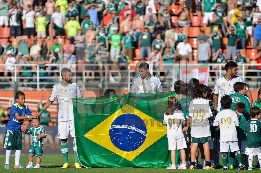 SÃO PAULO, SP, 21 DE SETEMBRO DE 2013 - CAMPEONATO BRASILEIRO SÉRIE B - PALMEIRAS x SPORT: Jogadores do Palmeiras entram com Bandeira do Brasil durante partida Palmeiras x Sport, válida pela 23ª rodada do Campeonato Brasileiro 2013 Série B, disputada no estádio do Pacaembu em São Paulo. FOTO: LEVI BIANCO - BRAZIL PHOTO PRESS.