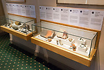 Glass cabinets display of archaeological finds with permission of Chippenham museum, Wiltshire, England, UK