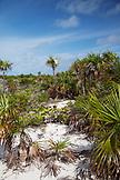 EXUMA, Bahamas. A view of Compass Cay.