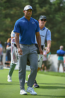 Tiger Woods (USA) heads down 13 during 1st round of the World Golf Championships - Bridgestone Invitational, at the Firestone Country Club, Akron, Ohio. 8/2/2018.<br /> Picture: Golffile | Ken Murray<br /> <br /> <br /> All photo usage must carry mandatory copyright credit (&copy; Golffile | Ken Murray)