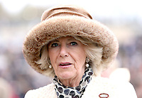 Camilla Duchess of Cornwall at Cheltenham Festival 2019 Ladies Day