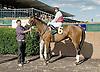 Grenoble winning at Delaware Park on 9/20/12
