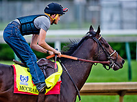 LOUISVILLE, KENTUCKY - APRIL 30: McCraken jogs during Kentucky Derby and Oaks preparations at Churchill Downs on April 30, 2017 in Louisville, Kentucky. (Photo by Scott Serio/Eclipse Sportswire/Getty Images)