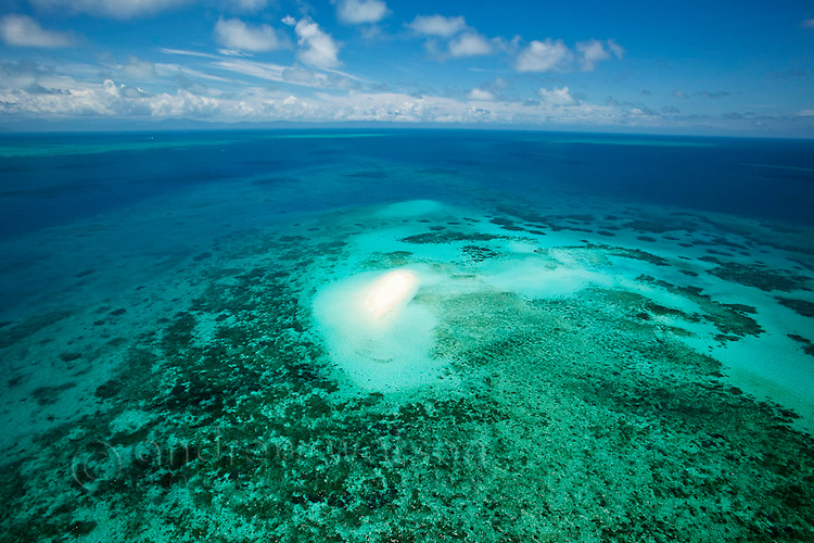 Aerial view of Vlassof Cay - remote sand cay off the coast of Cairns.  Great Barrier Reef, Queensland, Australia