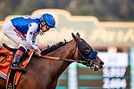 JAN 05: Bast with Drayden Van Dyke wins the Santa Ynez Stakes at Santa Anita Park in Arcadia, California on January 05, 2020. Evers/Eclipse Sportswire/CSM
