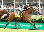 May 04, 2019 : #4 Beau Recall (IRE) and jockey Irad Ortiz Jr. win the 34th running of The Longines Churchill Distaff Turf Mile Grade 2 $400,000 for owner Slam Dunk Racing and Medallion Racing and trainer Brad Cox at Churchill Downs on May 04, 2019.  Candice Chavez/ESW/CSM