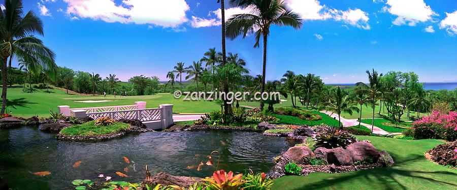 Hawaii, Wailea Gold Course Golf Course, panorama CGI Backgrounds, ,Beautiful Background