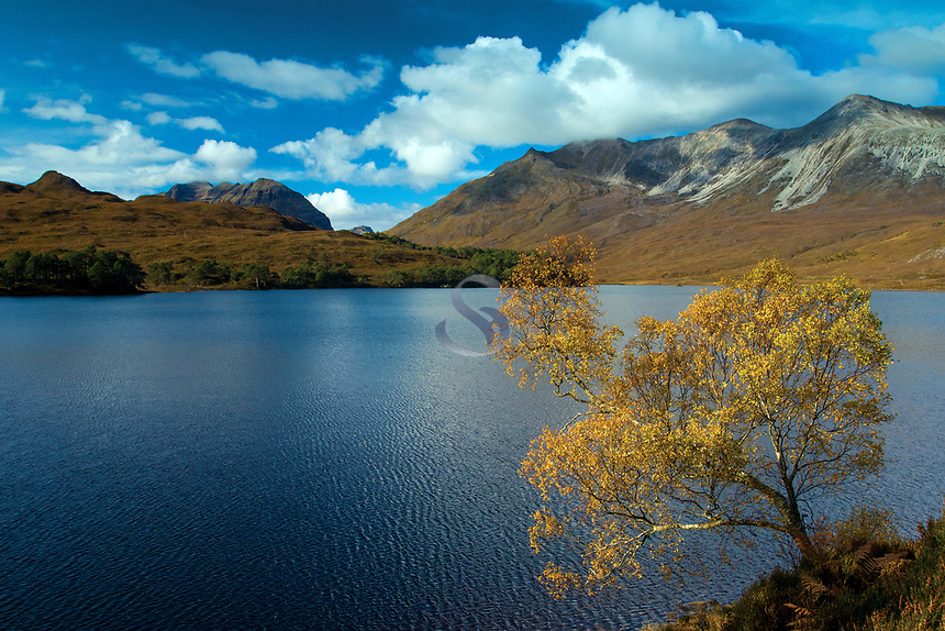 Liathach and Beinn Eighe from Loch Clair, Coulin Forest, Ross & Cromarty, Northwest Highlands