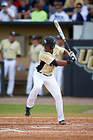 UCF Knights right fielder Eugene Vazquez (18) at bat during a game against the Siena Saints on February 21, 2016 at Jay Bergman Field in Orlando, Florida.  UCF defeated Siena 11-2.  (Mike Janes/Four Seam Images)