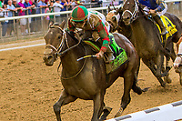 "ELMONT, NEW YORK - OCT 7: Firenze Fire #12, ridden by Irad Ortiz Jr., wins the Champagne Stakes, a ""Win & You're In' event, at Belmont Park on October 6, 2017 in Elmont, New York. ( Photo by Sue Kawczynski/ Eclipse Sportswire/Getty Images)"