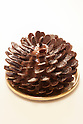A Gingerbread Pinecone dessert on display during the pre-opening event for the new pastry shop ''Dominique Ansel Bakery'' in Omotesando Hills on June 17, 2015, Tokyo, Japan. The new brand is known for its Cronuts pastry; a croissant doughnut fusion creation by Chef Dominique Ansel and is already hugely popular in New York. This is the first time that it will open an international branch. Japan has seen a recent boom in international food retailers especially trying to become the latest new trend in Tokyo. The store opens its doors to the public on June 20th and long lines are expected. (Photo by Rodrigo Reyes Marin/AFLO)