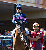 6th Plum Pretty Stakes - Trace of Grace