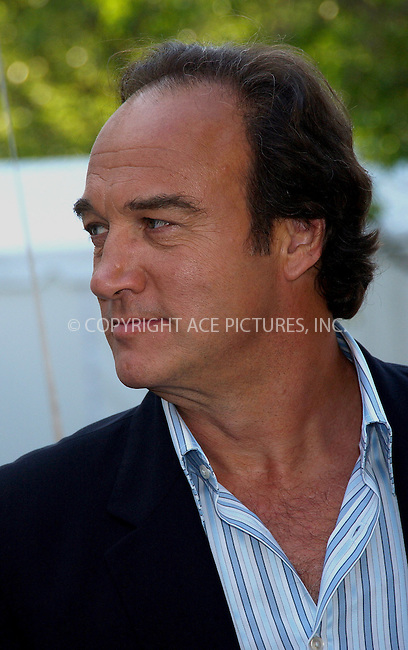 WWW.ACEPIXS.COM . . . . .....May 16, 2006, New York City ....Actor Jim Belushi arriving at the ABC 2006-2007..Upfronts.....Please byline: KRISTIN CALLAHAN - ACEPIXS.COM.. . . . . . ..Ace Pictures, Inc:  ..(212) 243-8787 or (646) 679 0430..e-mail: picturedesk@acepixs.com..web: http://www.acepixs.com