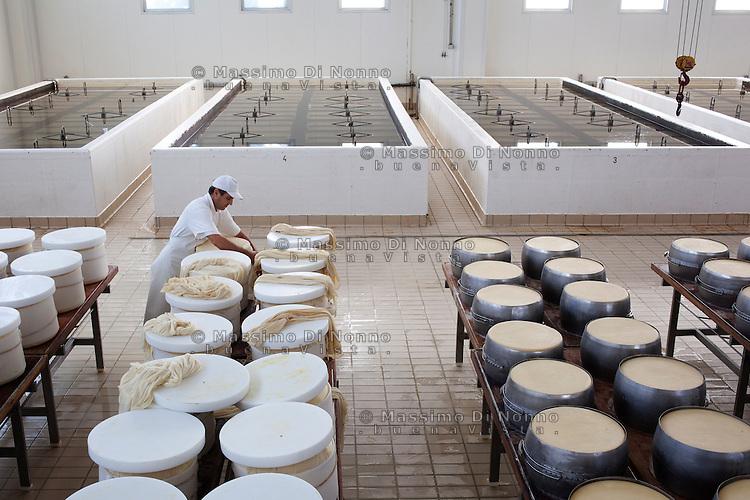 Fiorenzuola: lavorazione della produzione del Grana Padano nell'azienda Colla...Fiorenzuola men work for the production of Grana Padano in the farm Colla