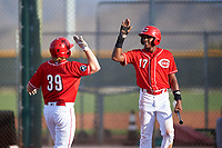 AZL Reds Caleb Van Blake (39) is congratulated by Fidel Castro (17) after hitting a home run during an Arizona League game against the AZL Athletics Green on July 21, 2019 at the Cincinnati Reds Spring Training Complex in Goodyear, Arizona. The AZL Reds defeated the AZL Athletics Green 8-6. (Zachary Lucy/Four Seam Images)