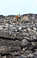 U.S. Geological Survey geologists confer while looking across a lava flow on the Big Island.