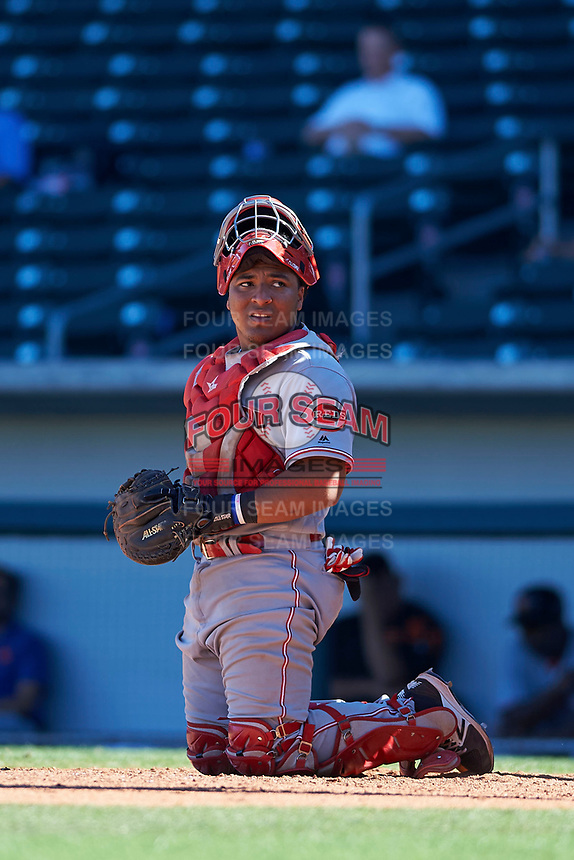 Scottsdale Scorpions catcher Chad Tromp (55), of the Cincinnati Reds organization, during an Arizona Fall League game against the Mesa Solar Sox on October 24, 2017 at Sloan Park in Mesa, Arizona. The Scorpions defeated the Solar Sox 3-1. (Zachary Lucy/Four Seam Images)