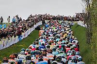 peloton up the Gulperenberg<br /> <br /> 52nd Amstel Gold Race (1.UWT)<br /> 1 Day Race: Maastricht &rsaquo; Berg en Terblijt (264km)