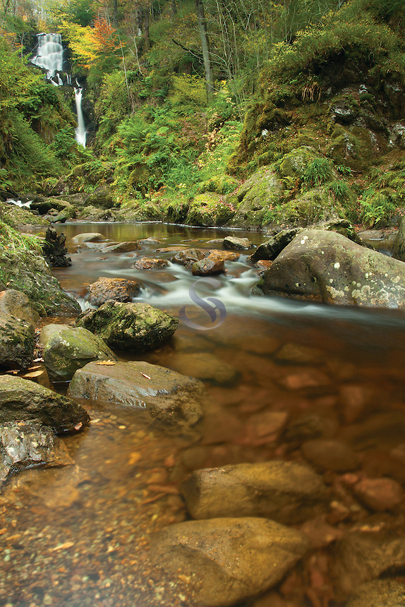 Little Fawn Falls, the Lime Craig Trail near Aberfoyle, Loch Lomond and the Trossachs National Park, Stirlingshire