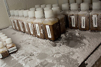 Fecal microbiota preparations, from donated fecal material, stand in bottles in a freezer at about -80 degrees F in a laboratory used by the OpenBiome project in MIT's Microbiology Program in Cambridge, Massachusetts, USA.  The OpenBiome project screens donations for a variety of disease agents and then provides these samples to hospitals around the US for treatment of clostridium difficile infection, which affects approximately 500,000 people in the US and kills about 14,000 annually. The samples are used in fecal microbiotal transplants (fecal transplants) and work as extremely efficient treatment for c. difficile infections.