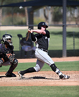 Evan Skoug - 2017 AIL White Sox (Bill Mitchell)