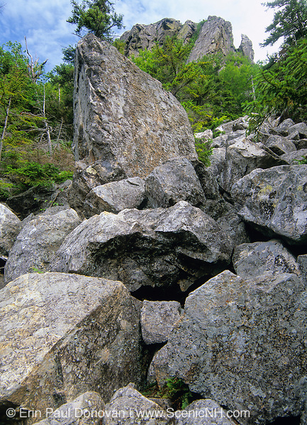 "Climber's Route to the ""The Watcher"" viewpoint on Eagle Cliff in Franconia Notch of the New Hampshire White Mountains. This is an unofficial rocky and steep trail not for the faint-hearted."