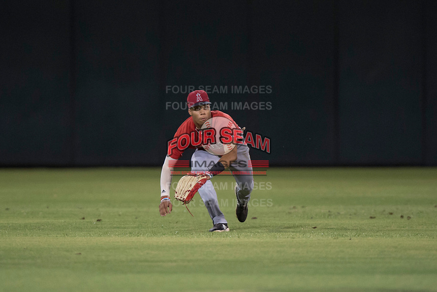 AZL Angels center fielder Jordyn Adams (21) attempts to make a diving catch during an Arizona League game against the AZL Padres 2 at Tempe Diablo Stadium on July 18, 2018 in Tempe, Arizona. The AZL Padres 2 defeated the AZL Angels 8-1. (Zachary Lucy/Four Seam Images)