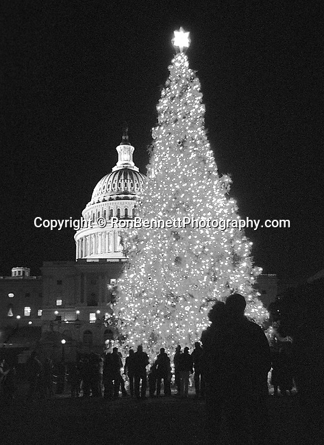 United States Capitol with Christmas tree Washington D.C., White House in Snow White from Lafayette Park with cannons Washington D.C.,  House official residence of President of United States Washington D.C.,  Fine Art Photography by Ron Bennett, Fine Art, Fine Art photo, Art Photography,