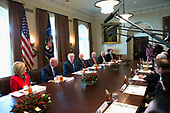 United States President Donald J. Trump makes remarks about tax reform during a bicameral meeting at the White House in Washington, DC on December 13, 2017. <br /> Credit: Chris Kleponis / CNP