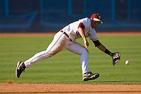 Shortstop Stephen Cardullo #38 of the Florida State Seminoles can't catch up to this ground ball at Durham Bulls Athletic Park May 20, 2009 in Durham, North Carolina. (Photo by Brian Westerholt / Four Seam Images)