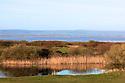 General view / Channel Course/Burnham & Berrow Golf Club, Burnham-on-Sea, Somerset, England. .Photo Credit/ Phil Inglis.....