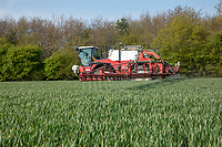 Spraying wheat with fungacide; Lincolnshire, April