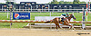 Thedamageisdone winning at Delaware Park on 9/3/14