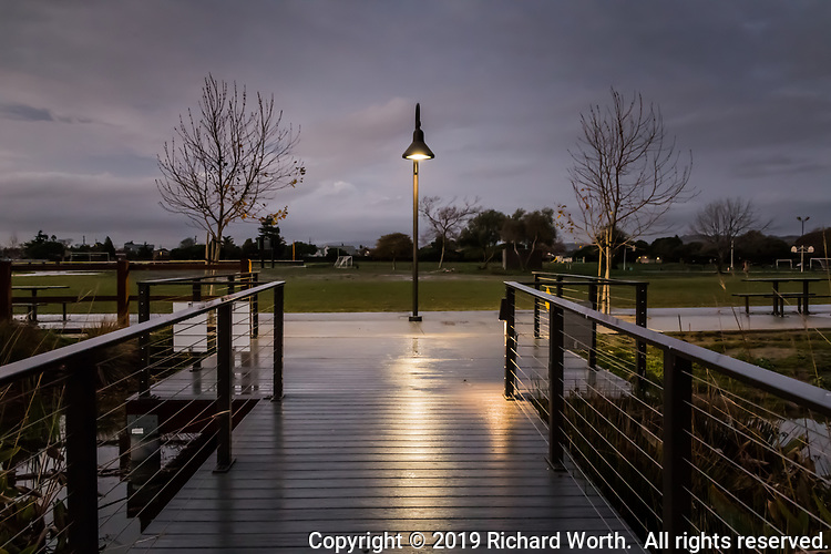 Night falls on the duck pond.  A lamp glows, lighting the path, wet with rain under burgeoning skies.
