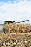 63801-07017 Farmer harvesting corn, Marion Co., IL