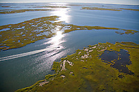 Brigantine, Salt Marsh, New Jersey