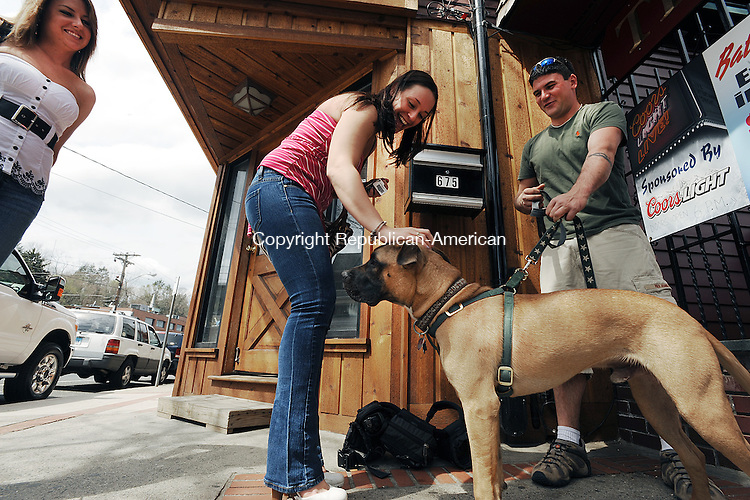 """WATERTOWN, CT-15 APRIL 2012--041512JS04-Tabitha Finley of Derby, center, and Hillary Crudgington of Litchfield greet """"Trigger"""" and his owner Paul Prue of Washington outside The Red Door in Watertown on Sunday during a benefit concert for the Waterbury Municipal Dog Pound. The concert featured """"Bottoms Up"""", a Van Halen cover band with proceeds and donations of dog supplies going to the dog pound. Trigger is one of the dogs at the pound that was diagnosed with Parvo which caused a shut down and quarantine of the facility but he was adopted and has made a full recovery. .Jim Shannon Republican-American"""