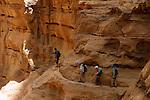 L endroit est frequente depuis des millenaires par les premiers habitants du desert. Les Nabateens ont creuse des marches pour faciliter la descente des porteurs d'eau lourdement charges. Cent kilometres a peine plus au sud, ils ont sculpte dans la meme couche de gres rose et ocre les fabuleux palais et tombeaux de Petra.