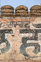 Indian village home with dried cow dung for fuel in Sawai Madhopur in Rajasthan, Northern India