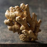 Gastronomie générale: Rhizome de Gingembre bio - Stylisme : Valérie LHOMME